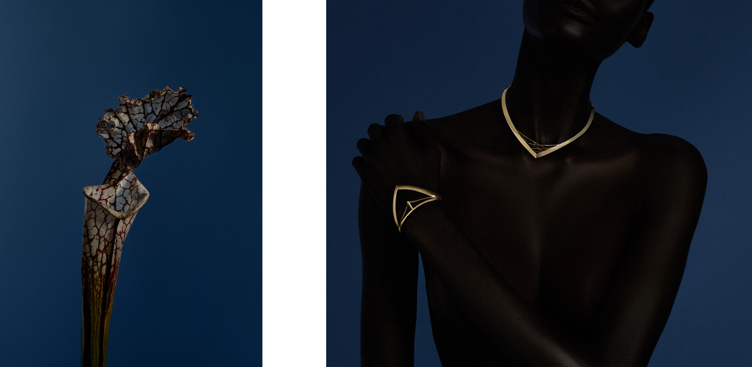 Webby Award winner jewelry still life and portrait campaign produced by DTE Studio for Bliss Lau.