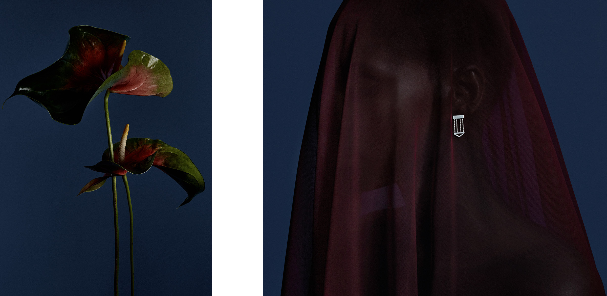Images of flower and portrait for a jewelry campaign by DTE Studio for Bliss Lau.